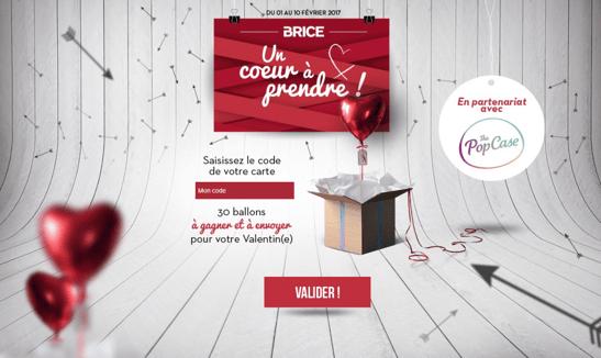 Visuel du jeu Brice Saint Valentin